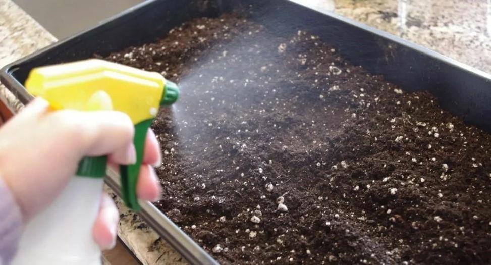Химическая обработка земли